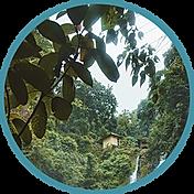 MIN_Markets_Features-Benefits-ExoticLoca