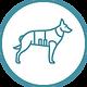 Military Veterinary icon