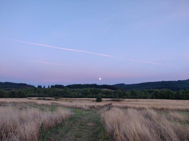 Rising Moon looking South.jpg