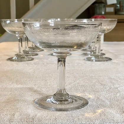 Set of 12 Champagne Coupes