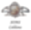 SOMS Caldana logo
