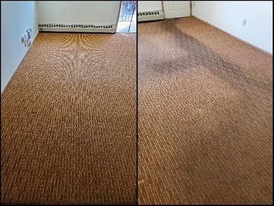 Carpet.Cleaning.jpg