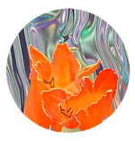 holographic circle flower.png