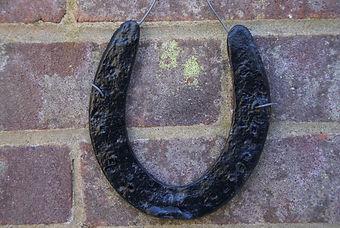 Lucky horseshoe.JPG