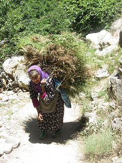 Old Woman carrying load.JPG