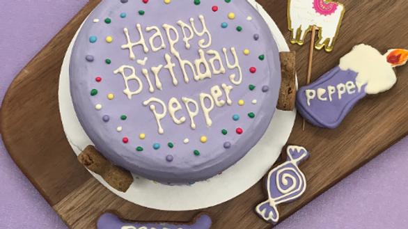 Dots - Dog Birthday Cake