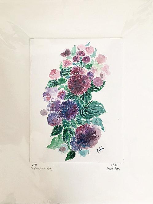 """""""Hydrangeas in glory"""""""