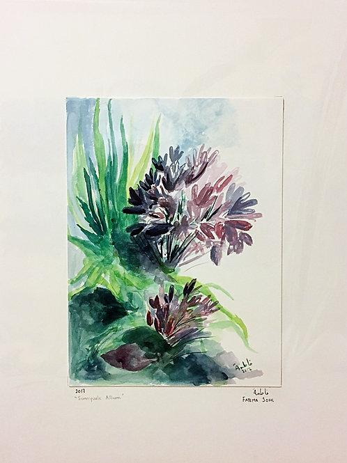 """""""Sunnyvale Alliums"""""""