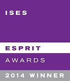 ISES Esprit Award Sugar Fashionista