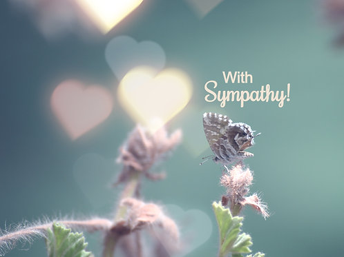 With Sympathy! Gift Box
