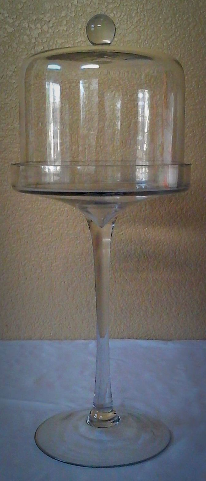 Tall Clear Glass with Dome