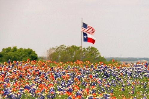 I love Texas Gift Box