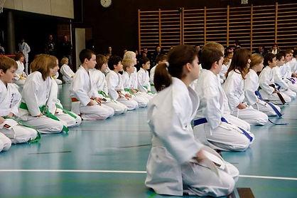 Kodenkai-karate-enfants-valais-dsa.jpg