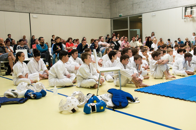 Kodenkai Karate Club Valais 2018-11