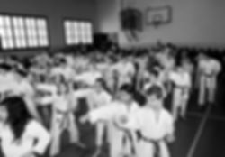 Kodenkai Karate Club Valais mm7