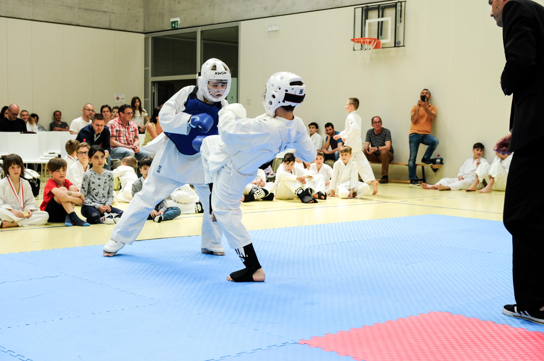 Kodenkai Karate Club Valais 2018-18