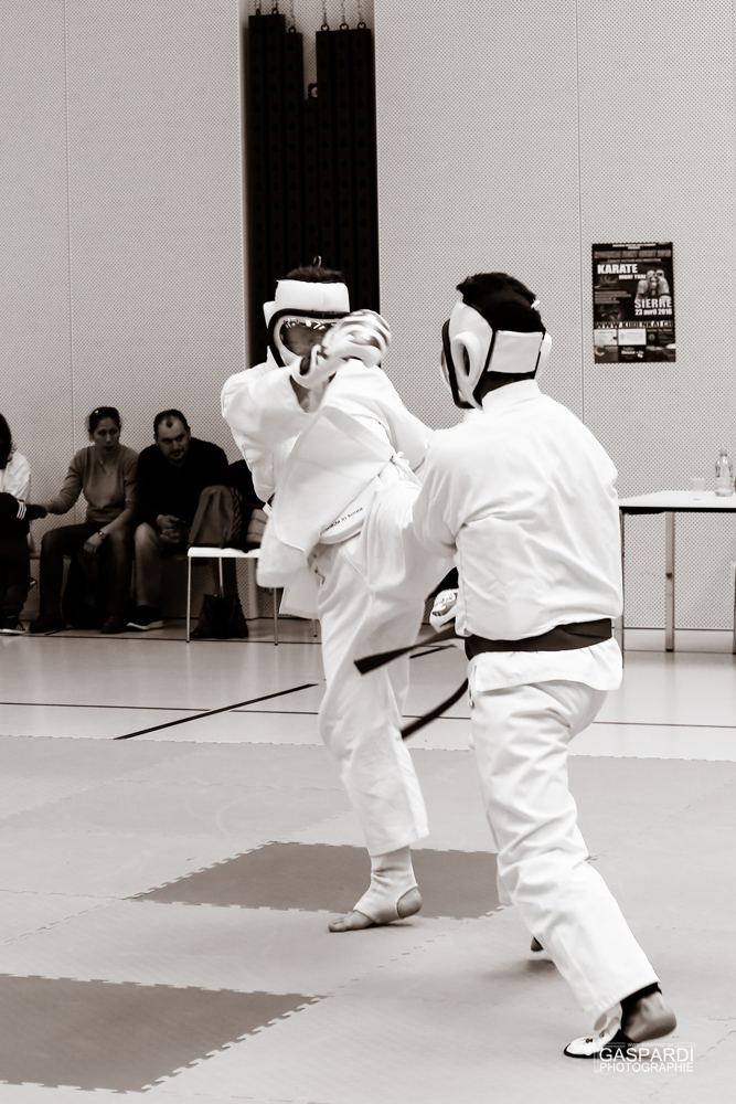 Karate Club Valais Kodenkai 0010