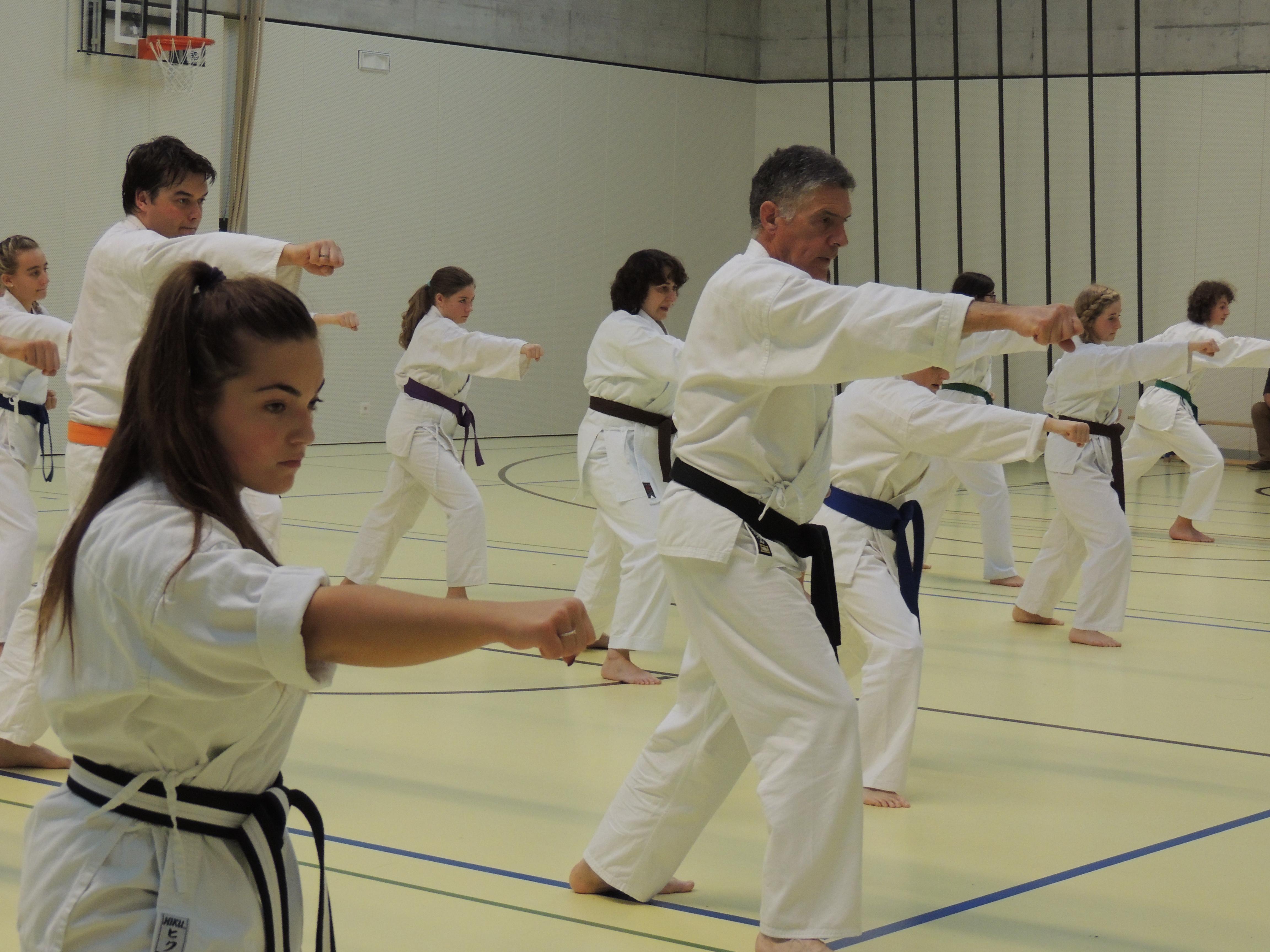 Kodenkai Karate Club Valais z15