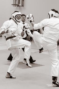 Karate Club Valais Kodenkai 0016
