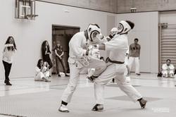 Karate Club Valais Kodenkai 0017