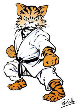 Kodenkai Karate Kids Valais Tora.jpg
