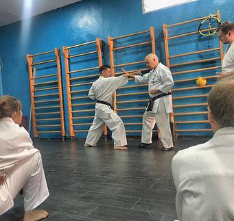 Kodenkai-karate-adultes-Valais 2s.jpeg