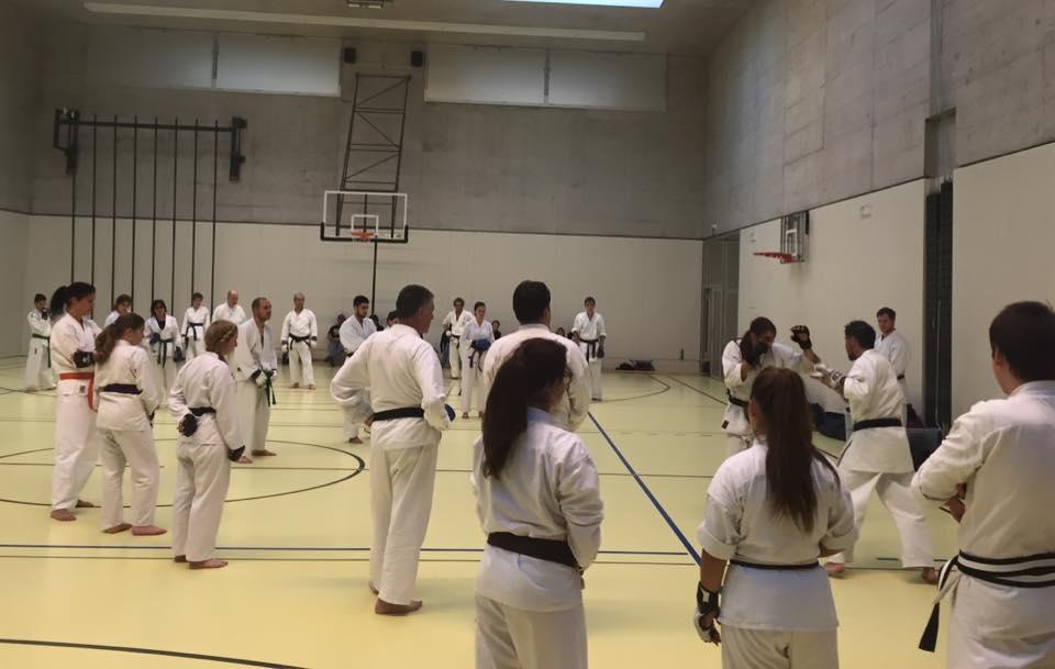Kodenkai Karate Club Valais z6