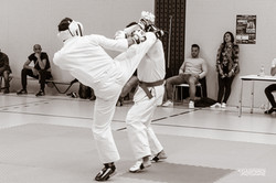 Karate Club Valais Kodenkai 008