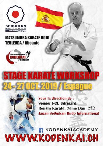 Kodenkai Karate Club Valais stage2019.jp
