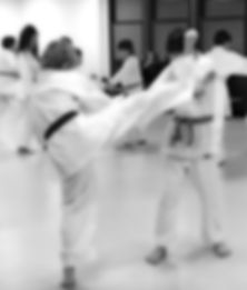 Kodenkai Karate Club Valais p33