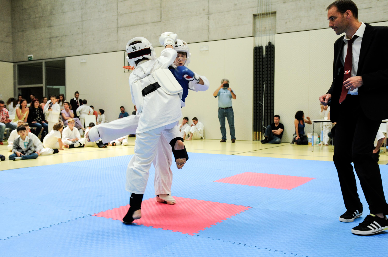 Kodenkai Karate Club Valais 2018-19