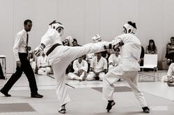 Karate Club Valais Kodenkai 003