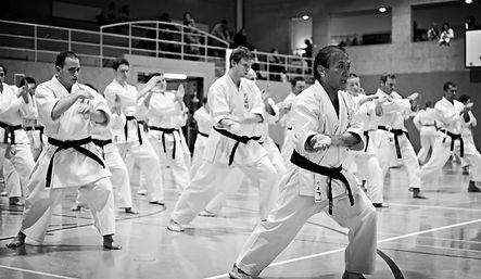 Kodenkai Karate Muay Thai Kickboxing Valais Club160
