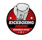 Kodenkai Kickboxing juniors Valais.jpg