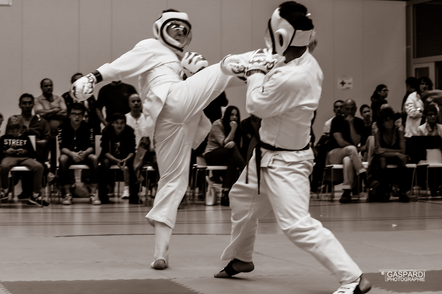 Karate Club Valais Kodenkai 001