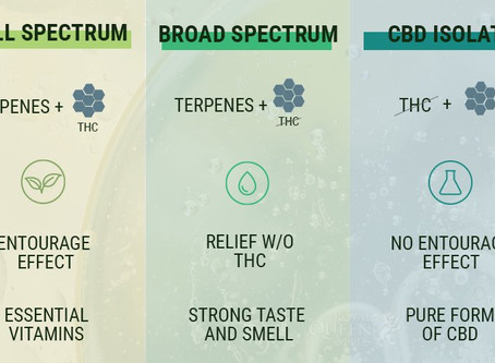 Differences in CBD