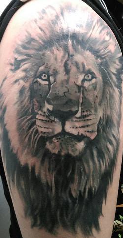 Lion half sleeve