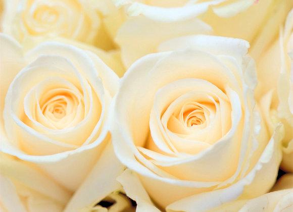 Fraîcheur de rose | Spray d'ambiance