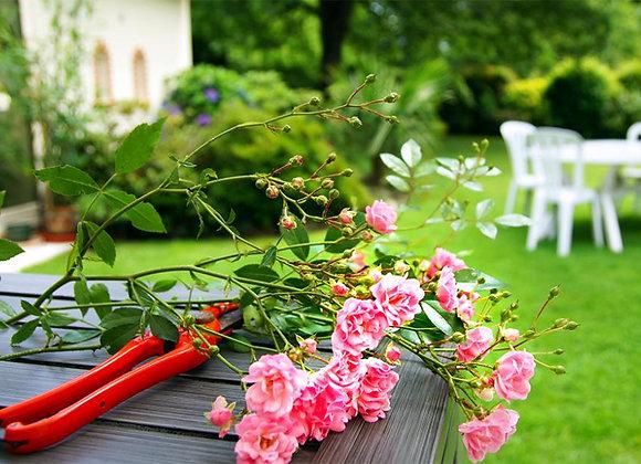Jardin anglais | Diffuseur à tiges