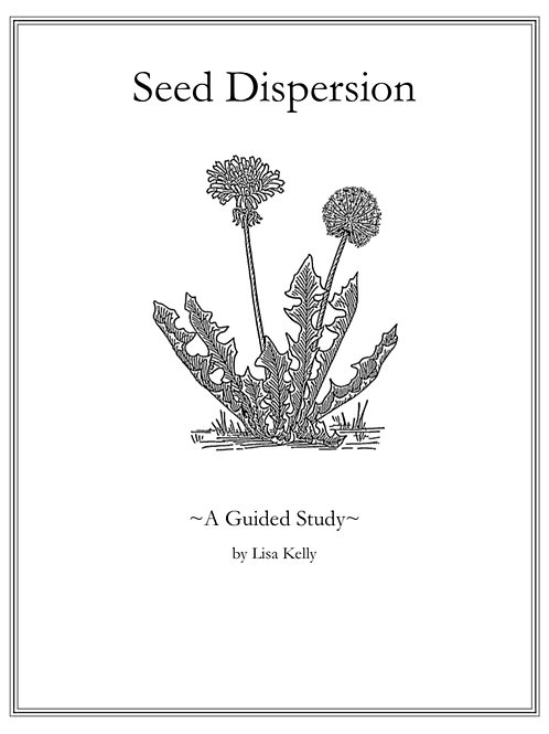 Seed Dispersion: A Guided Study