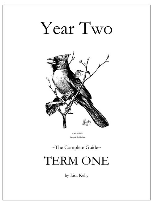 Year Two: Term One