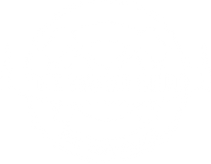 Wood Shed Axe