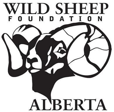 Wild Sheep Foundation Alberta