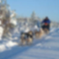 nordic holidays 3.jpg