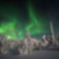 nordic holidays 2.jpg