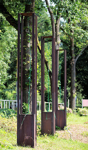Ungestörtes Wachstum - Skulpturenpark Kettwig
