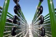 Biobrennstoff aus Algen