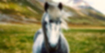 pixaby iceland .jpg