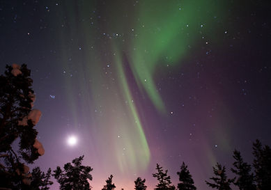 lola_akinmade_åkerström-northern_lights-