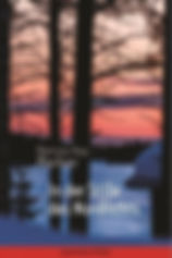 COVER_In der Stille des Nordlichts_97838